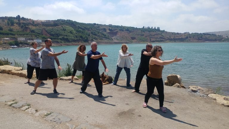 immune system qi gong